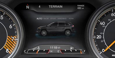 Selec-Terrain® traction control
