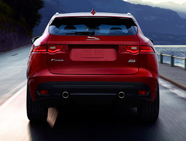 Rear haunches