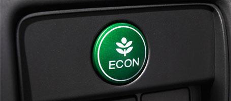 Eco Assist™