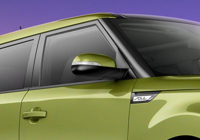 Dual Body-Color Mirrors