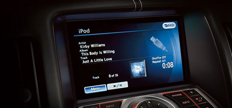 iPod<sup>&reg;</sup> Integration