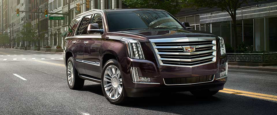 2016 Cadillac Escalade For Sale in Hamilton