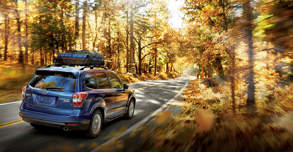 2016 Subaru Forester Overview image